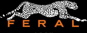 Logo von Feral Interactive (Bildrechte: Feral Interactive)